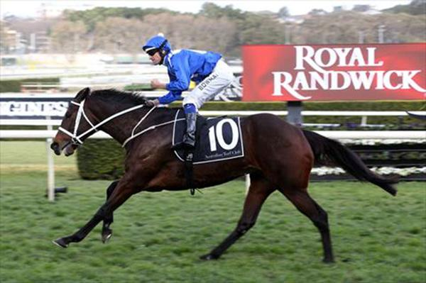 Winx claims 30th consecutive win with Apollo Stakes victory at Randwick